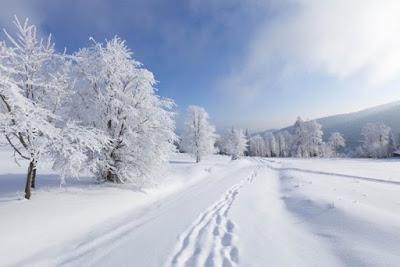 10 astuces pour un hiver serein et en pleine forme