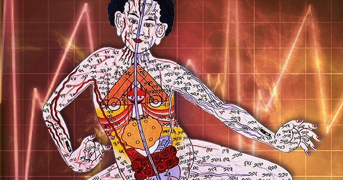 La Médecine Energétique de Donna Eden -4 – Les méridiens